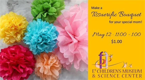 Make a Tissuerific Bouquet for your special mom! May 12 from 11:00 to 1:00. $1.00 at E3 Children's Museum & Science Center.