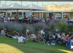 summer terrace music series